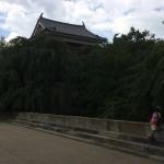 そうだ、長野へ行こう。